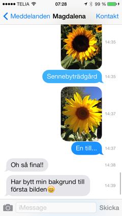 iOS 7 Meddelanden